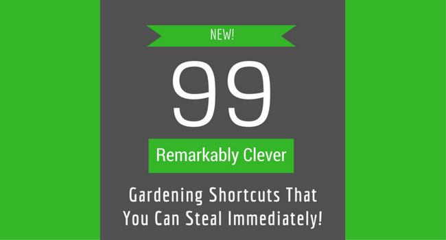 99 Remarkably Clever Gardening Tips & Shortcuts That You Can Steal Immediately!
