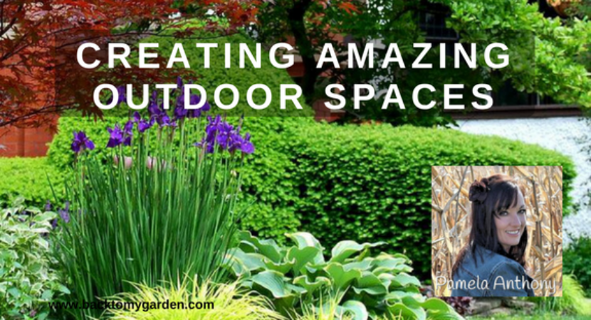 Creating Outdoor Spaces creating amazing outdoor spaces with pamela anthony – back to my