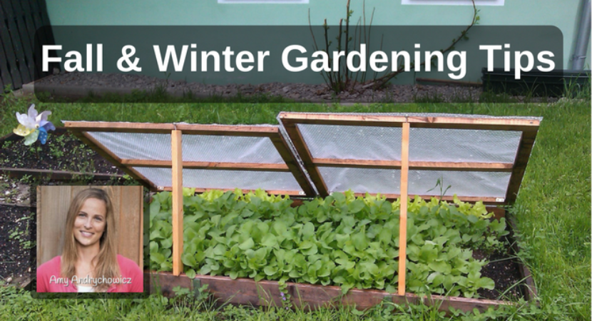 Fall Winter Gardening Tips With Amy Andrychowicz Back To My Garden