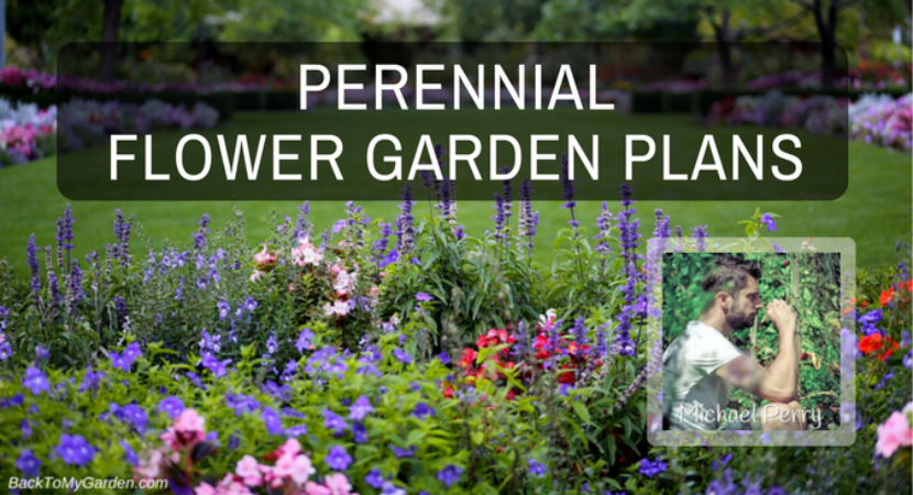 flower garden plans. Perennial Flower Garden Plans With Michael Perry W